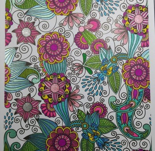 100 Nouveaux coloriages 11