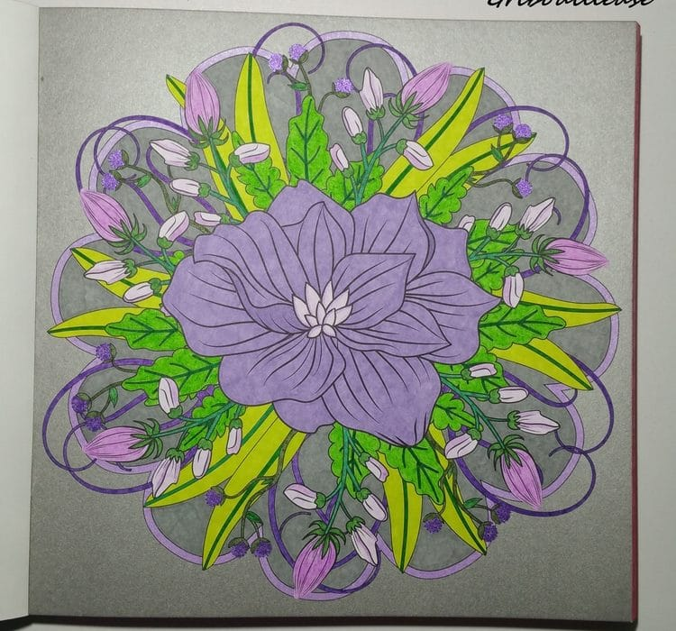 Fleurs exquises 1