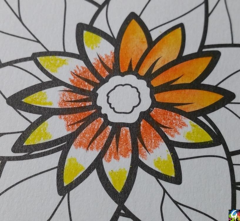 fleurs-exquises-8-2-gribouilleuse