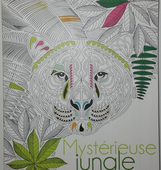 mysterieuse jungle