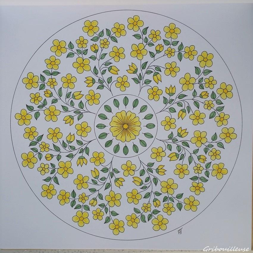 Nature Mandala n°5
