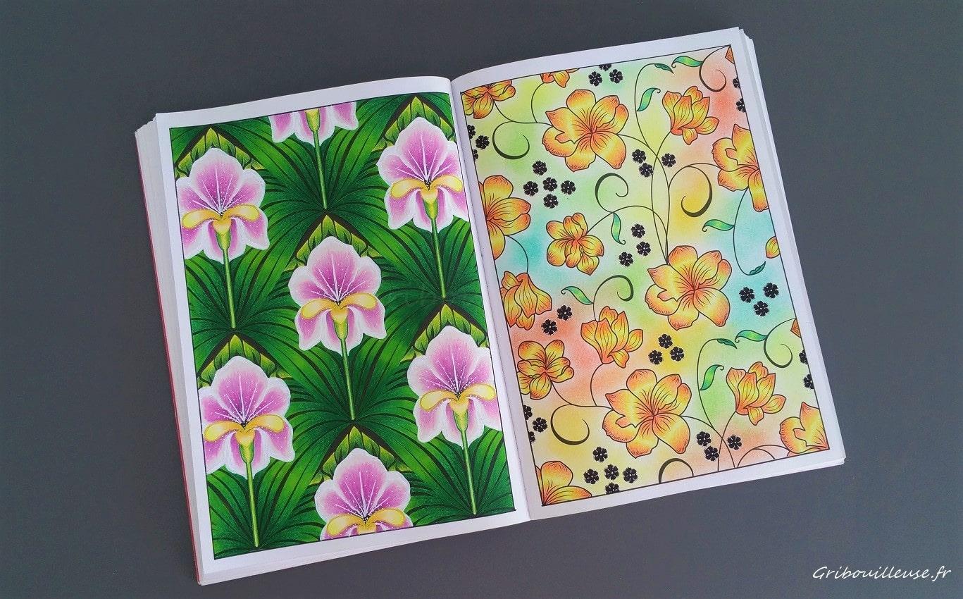 100 Nouveaux Coloriages n°33