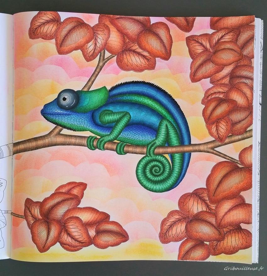 Animaux Fantastiques de Millie Marotta - Coloriage n°6