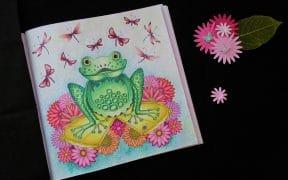 Forêt Enchantée de Johanna Basford, la grenouille
