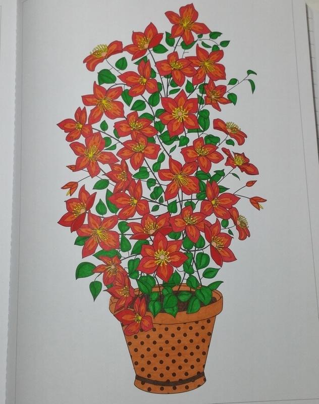 Fleurs en pot