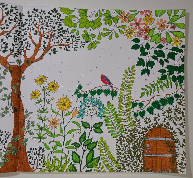 jardin-secret-2-4-gribouilleuse
