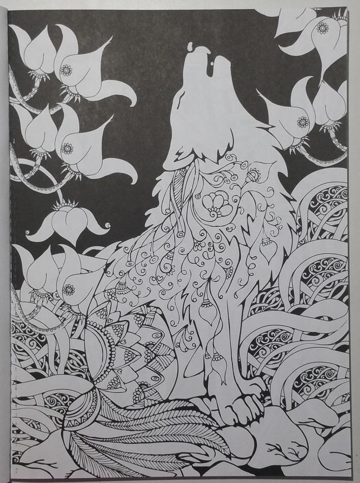 Midnight Forest 3