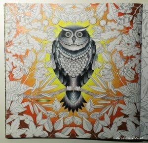 Jardin Secret n°14 Hibou