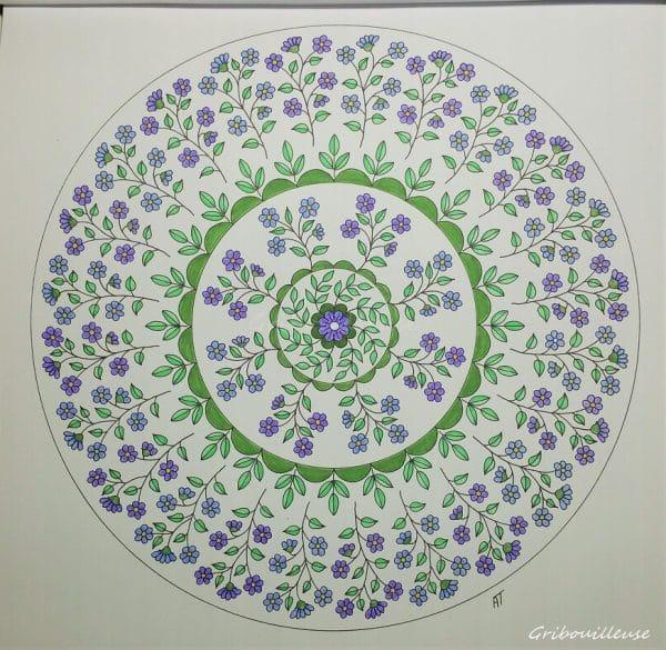 Nature Mandala n°1