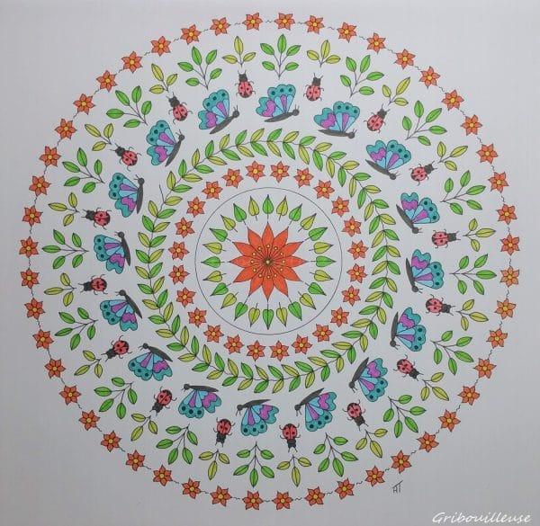 Nature Mandala n°4