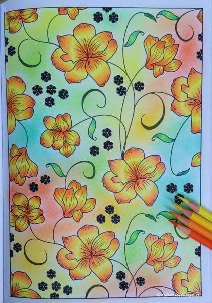 100 Nouveaux Coloriages n°32