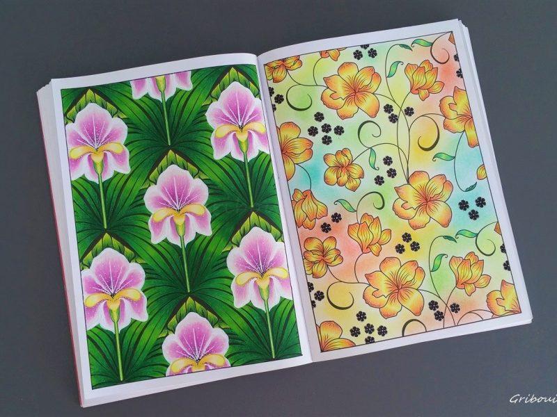 100 Nouveaux Coloriages 33