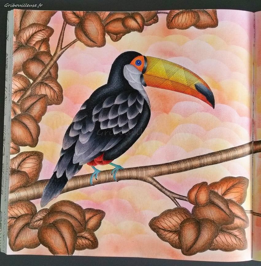 Animaux Fantastiques de Millie Marotta - Coloriage n°7