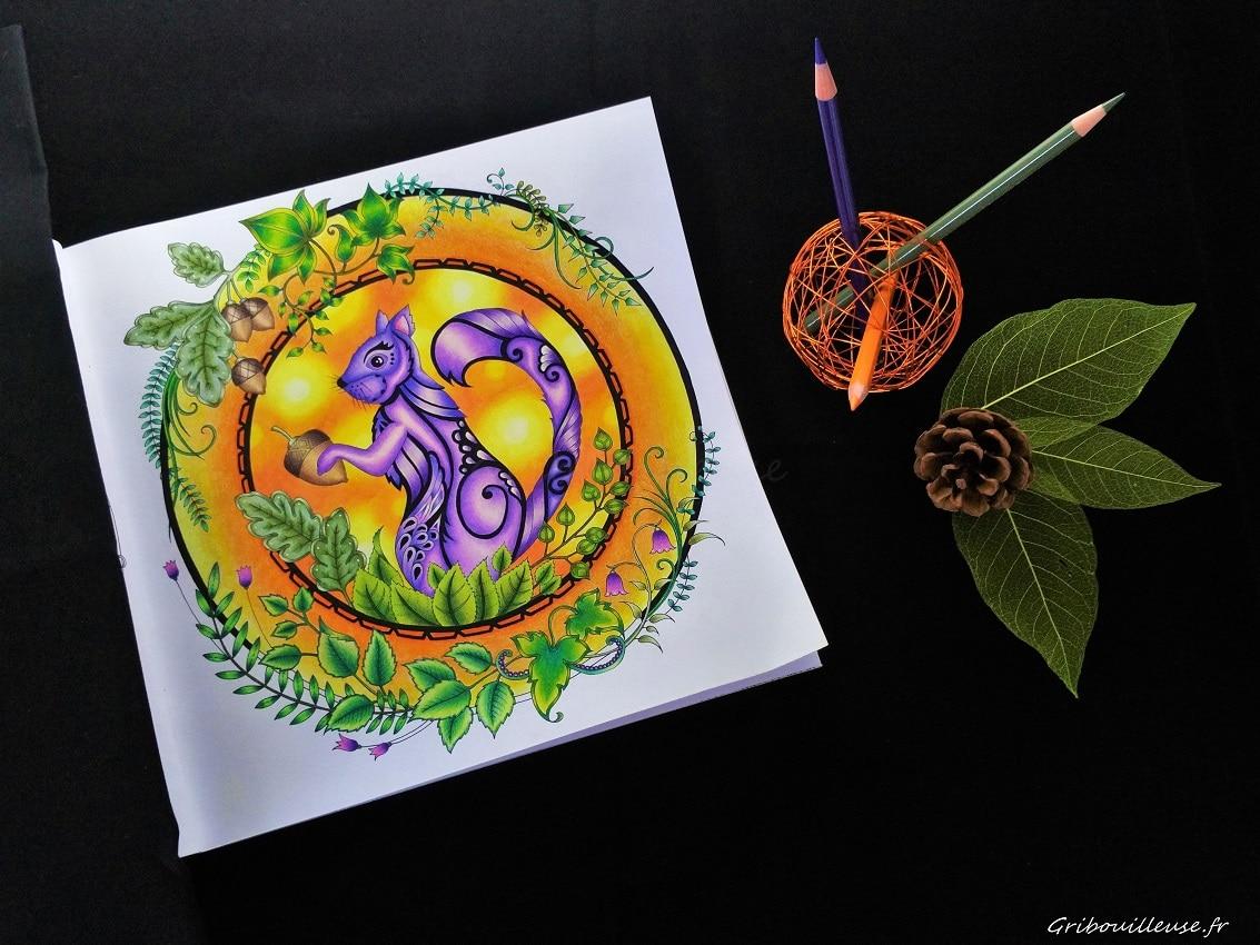Read more about the article Dans la Forêt Enchantée, les écureuils sont violets