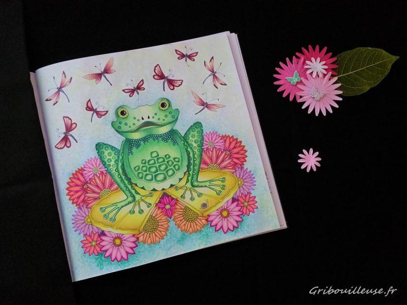 La grenouille de la forêt enchantée