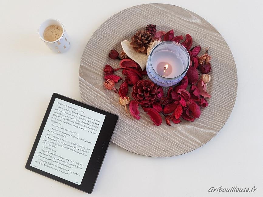 Une liseuse numérique ? Sacrilège ! Ou pas …