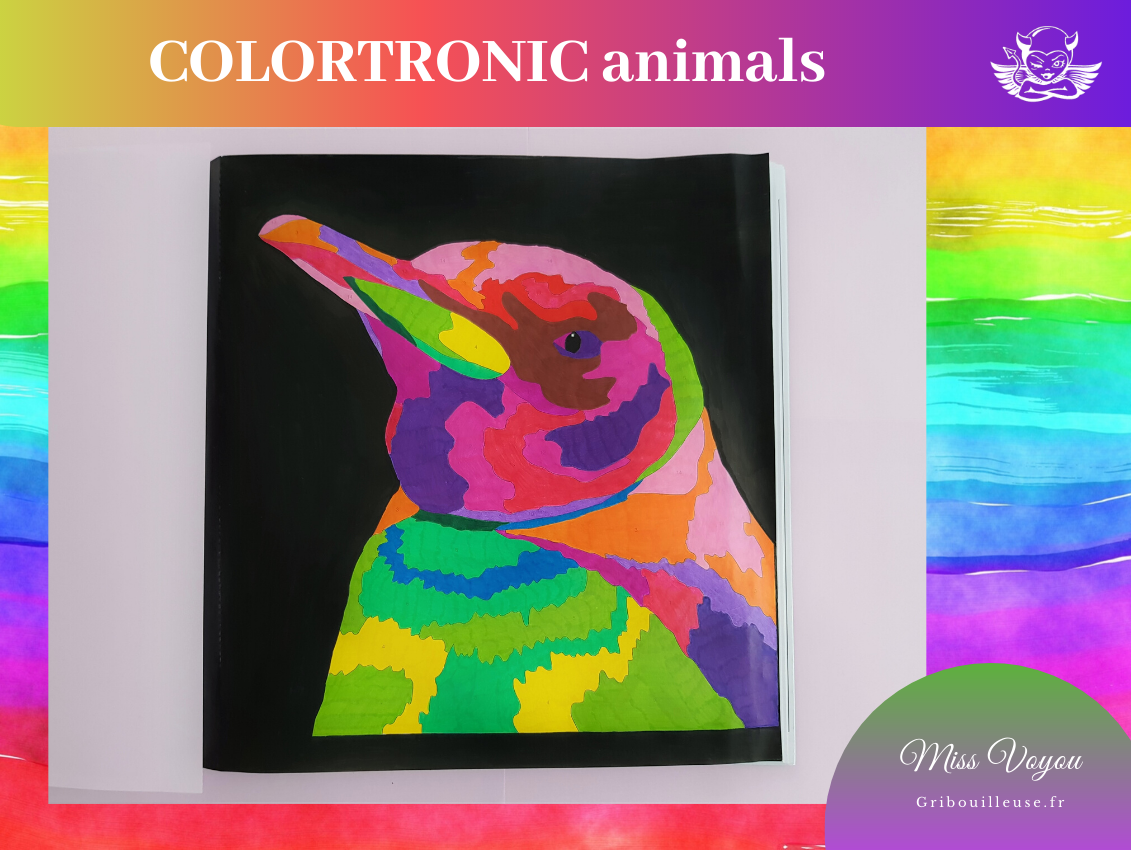 COLORTRONIC Pingouin