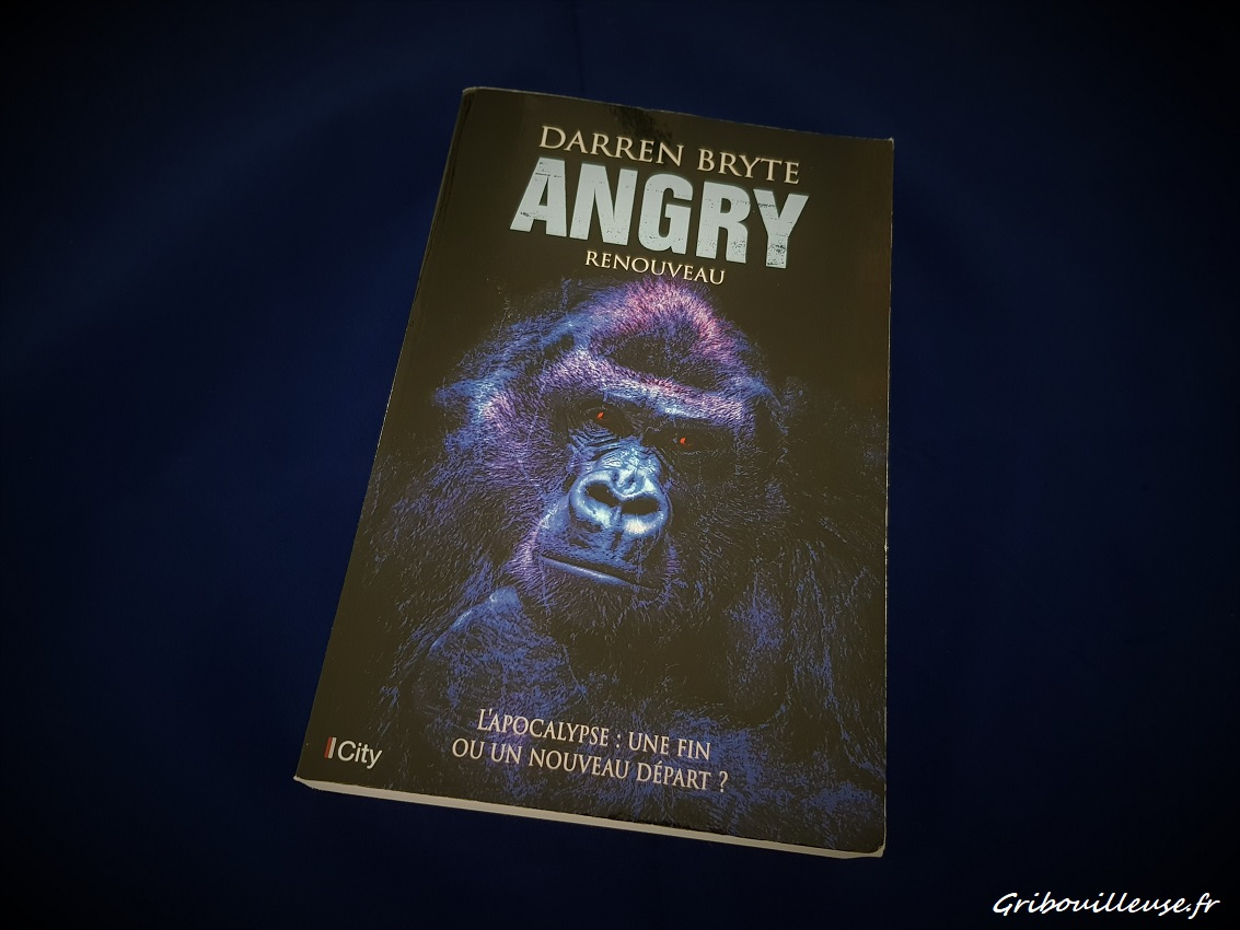 Angry Tome 2 - Renouveau - Darren BRYTE