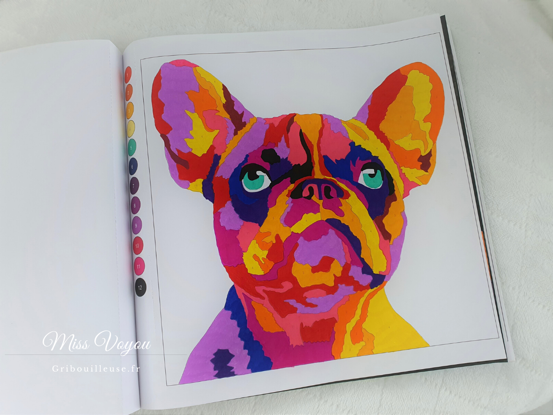 Colortronic Animals - Bouledogue