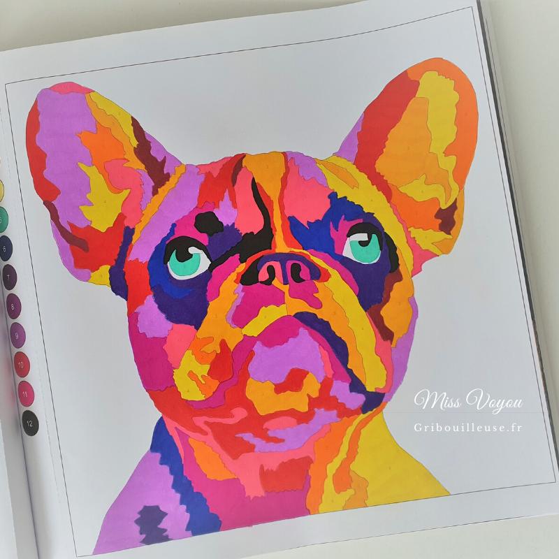 Colortronic Animals - Bouledogue