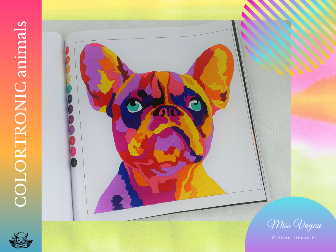 COLORTRONIC Bouledogue