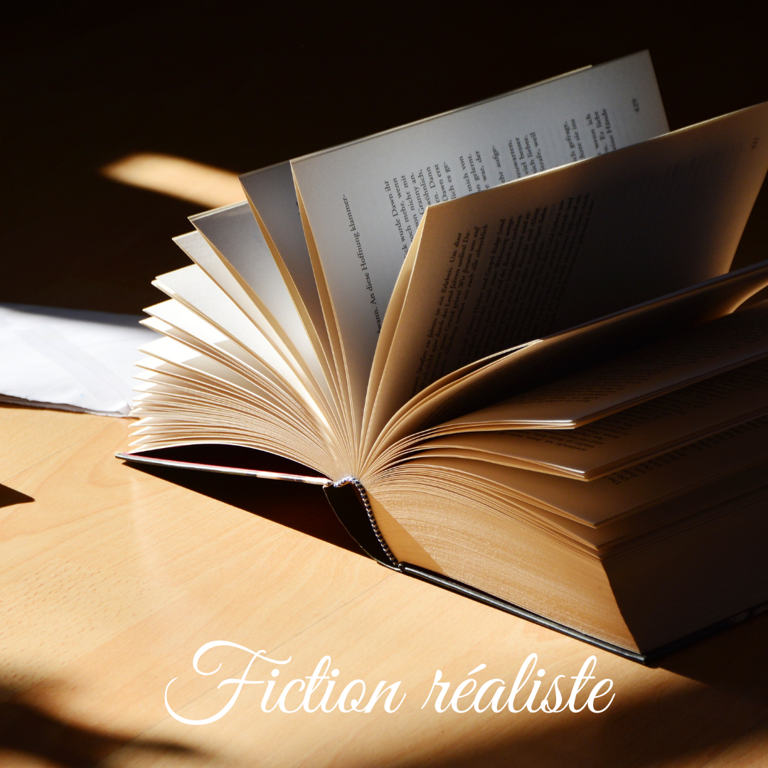 Fiction Réaliste